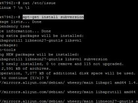 [整理]阿里云Debian服务器搭建SVN服务器