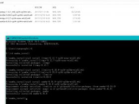 【分享】Windows无法安装Pandas,Numpy,Numba怎么办