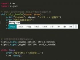 【已解决】Pycharm,Sublime中文输入框不跟随