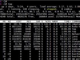 [整理]鲲鹏性能优化十板斧(二)——CPU与内存子系统性能调优<TaiShan特战队出品>
