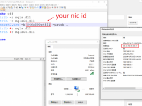 [已解决]ModelSim出现Unable to checkout a viewer license